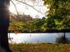 Herbstsonne, Niers bei Oedt