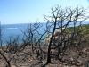 Punta di a Chiappa